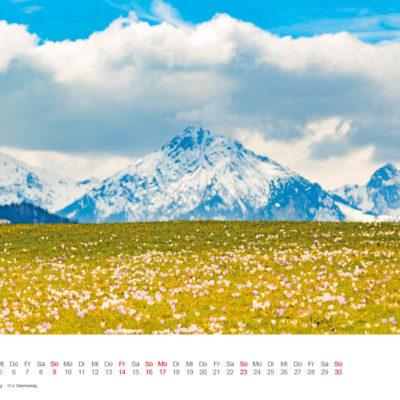 Allgäu Kalender 2017 - April